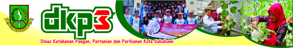 DKP3 Kota Sukabumi