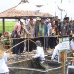 Peringati Hari Pangan Sedunia, Pemerintah Optimalisasi Lahan Rawa untuk Pertanian Produktif